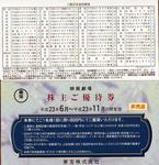 Touhou_Yutai_201105.jpg